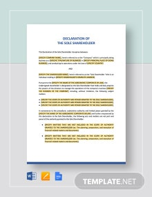 Declaration of the Sole Shareholder Template