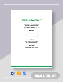 Company Fact Sheet Template
