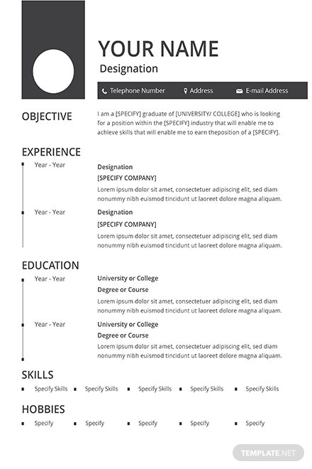 free fashion designer resume and cv template  download 160