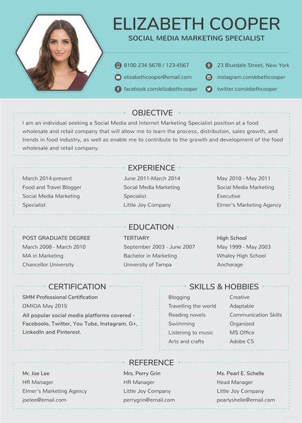 free internship cv and resume template in adobe indesign