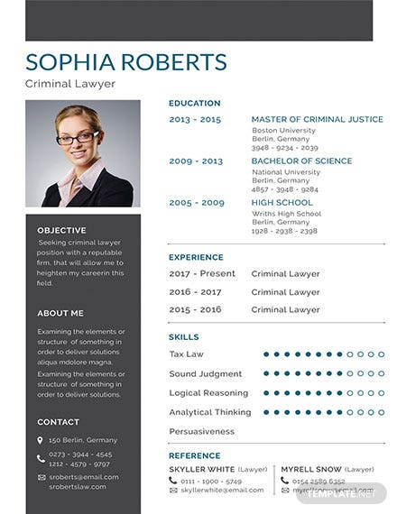 free basic criminal lawyer resume template download 160 resume