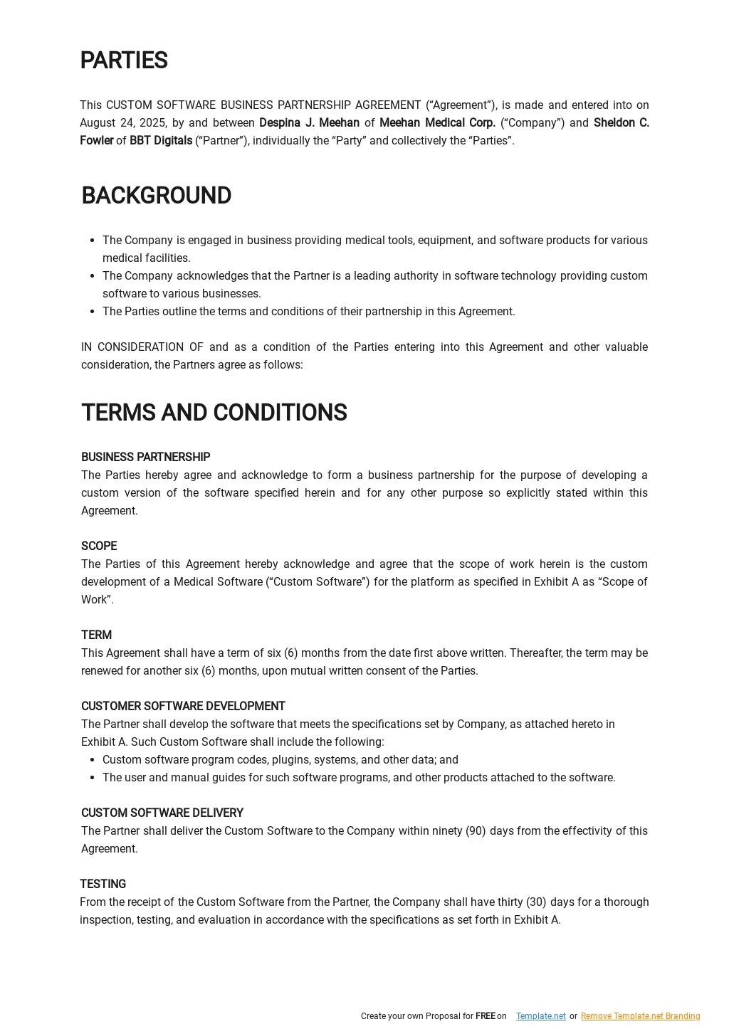 Custom Software Business Partnership Agreement Template 1.jpe