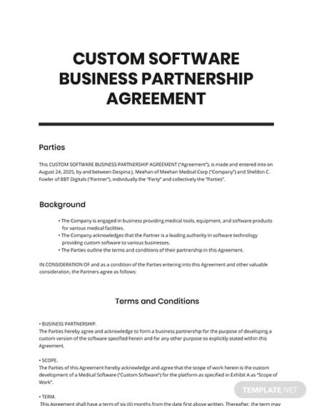 Custom Software Business Partnership Agreement
