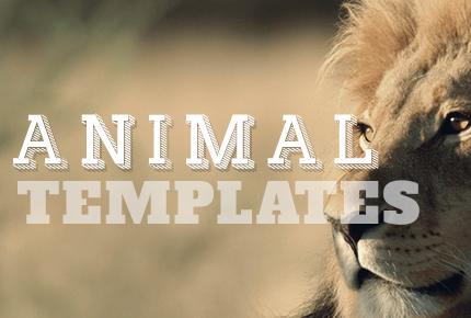 animal templates1