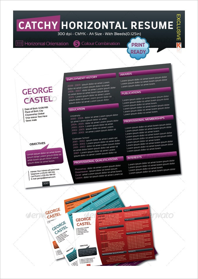 catchy horizontal resume1