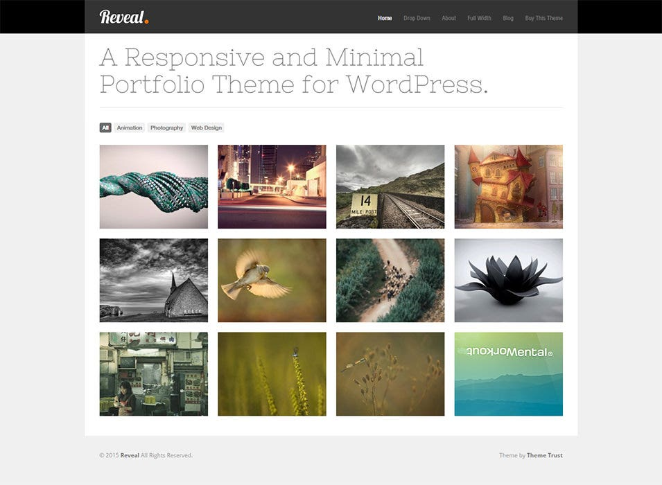 Reveal Wordpress Template