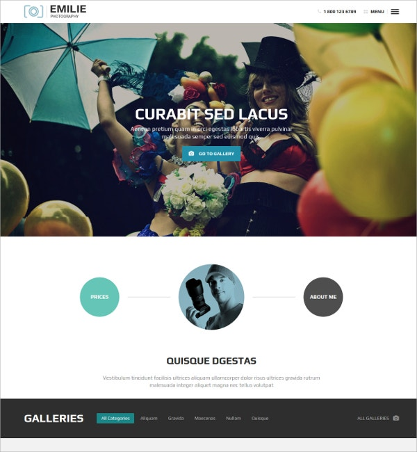 Photography Portfolio Grid WordPress Website Theme $49