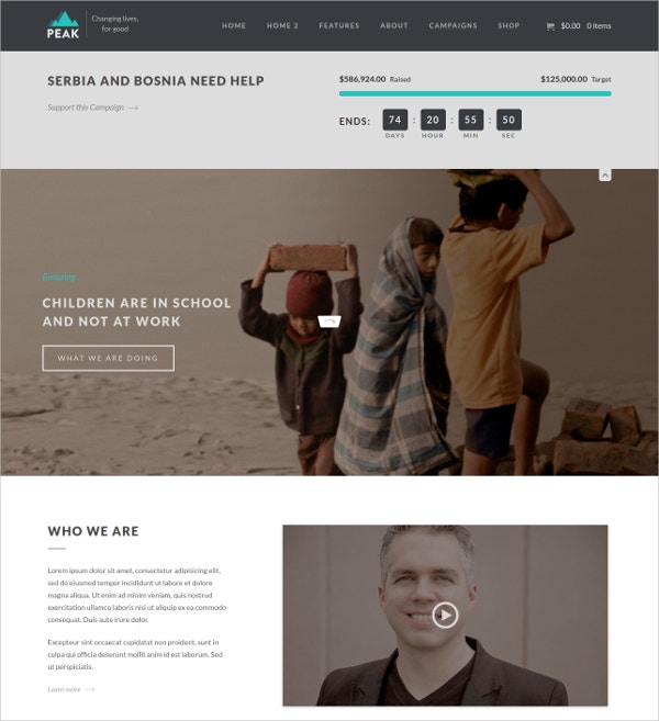 Charity Nonprofit Foundation WordPress Website Theme $59