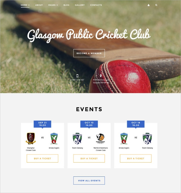 Cricket Club Joomla Portfolio Template $75