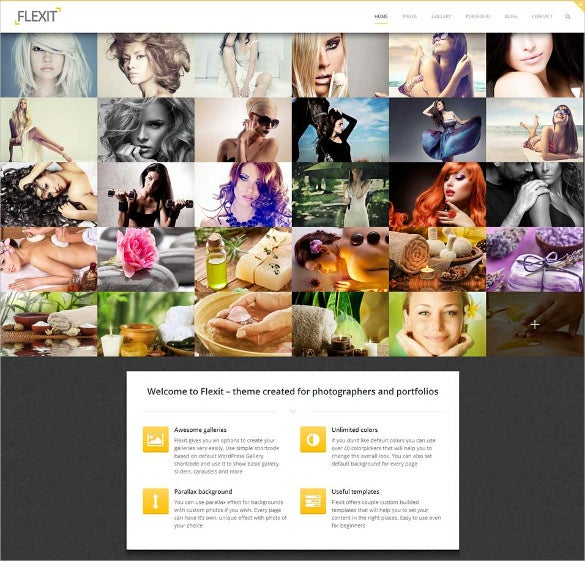 theme for photographers and portfolios