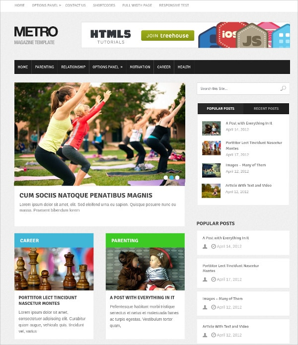 Elegant Metro Style WP Website Theme for Magazine $59