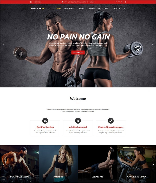 Premium Gym Fitness Website Template $49