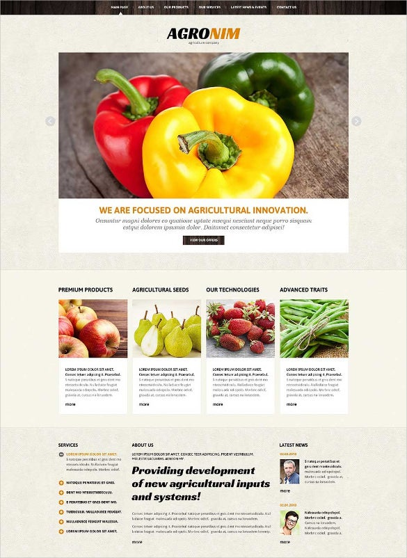 vegetable responsive joomla template1