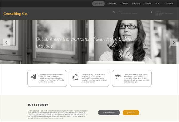 consulting business advisory services website design