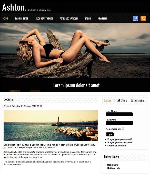free pro website joomla template
