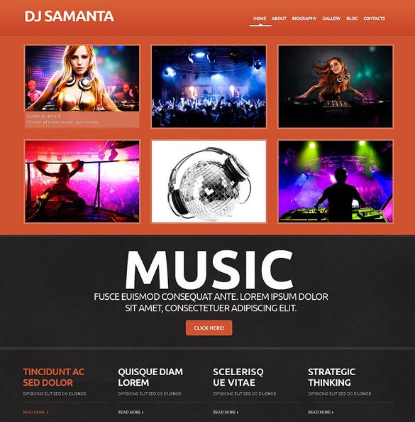 dj responsive wordpress website theme