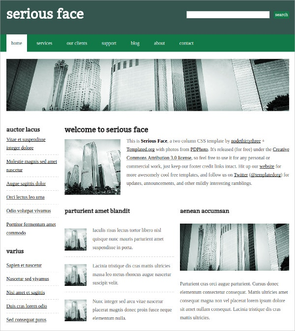 10 free css themes templates free premium templates business corporate free css template friedricerecipe Image collections