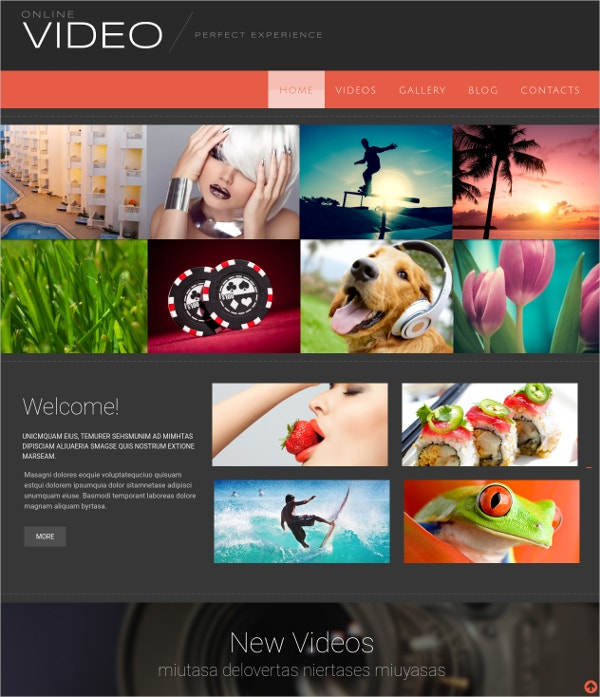 Online Video Media Flash CMS Template
