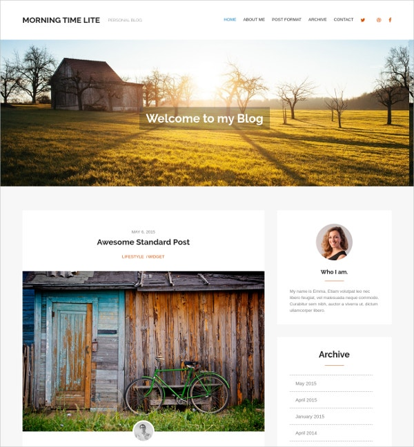 free professional personal wordpress theme