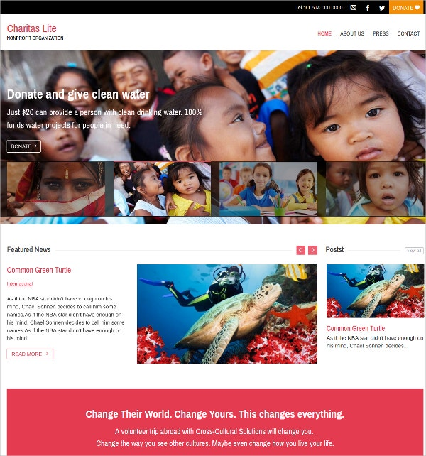 free nonprofit charity personal wordpress theme