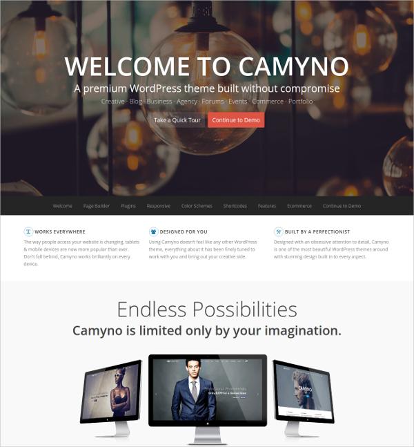 Premium WordPress Landing Page Theme $59
