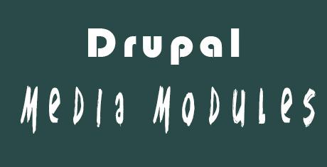 best drupal media modules