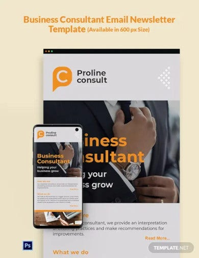 business consultant email newsletter template