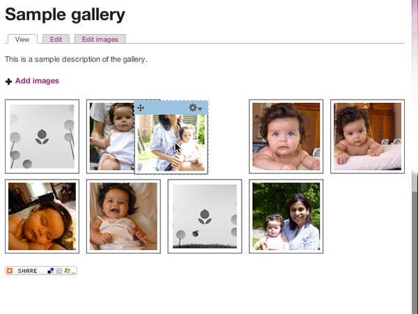 11  best drupal gallery modules