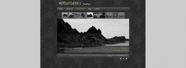 photoartwork21 788x290
