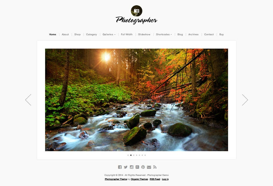 photographer demo a simple professional wordpress photographer theme