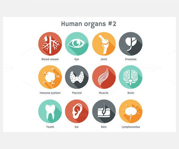 Set #2 of icons with human organs