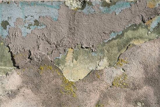 texture 736