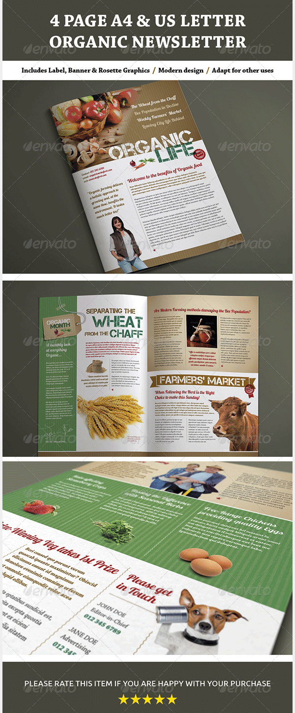 4 page a4 and us letter organic newsletter