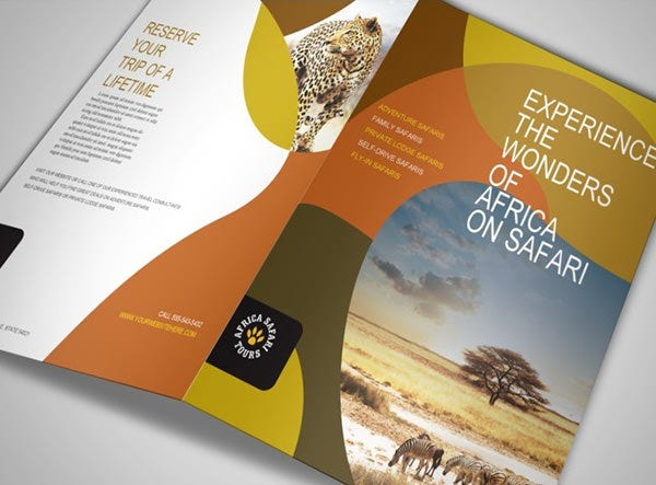 61  print brochure templates  u0026 psd designs