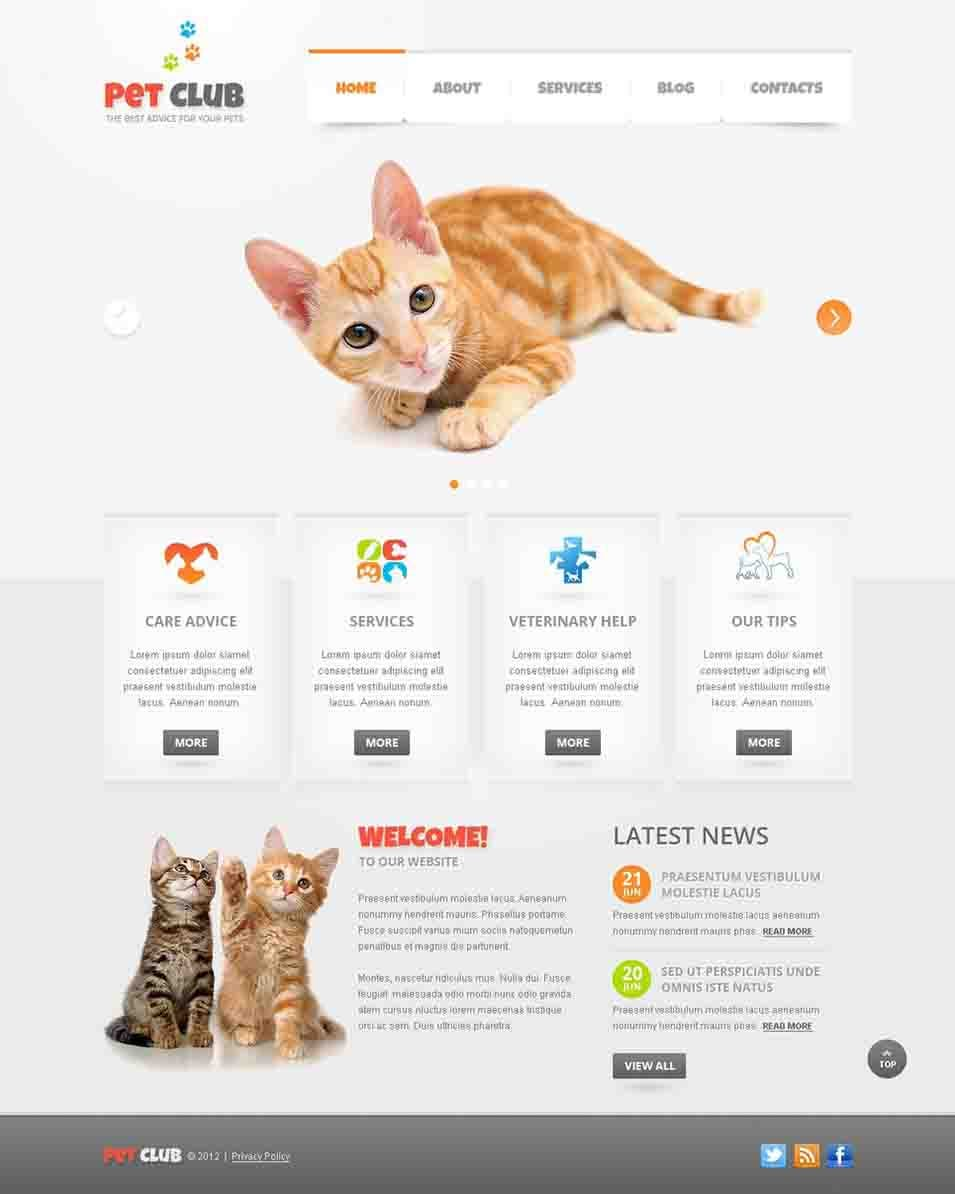 animals pets joomla template40554