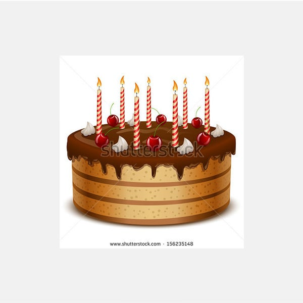 Birthday cake with candles isolated on white background vector
