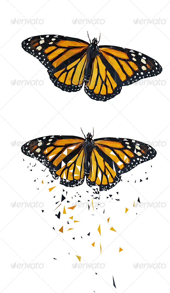 butterfly vector triangled