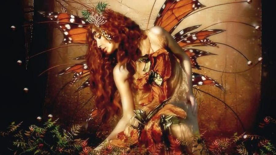 fantasy butterfly fairy copy