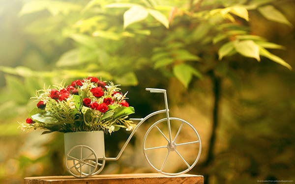 flowers in bike shaped pot copy