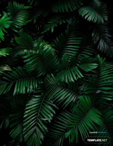 free tropical zoom virtual background template