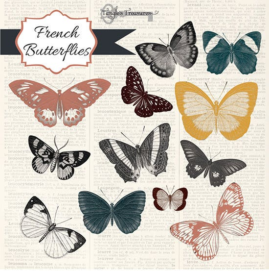 Downloadable Realistic Butterfly Photoshop Brushes Collection