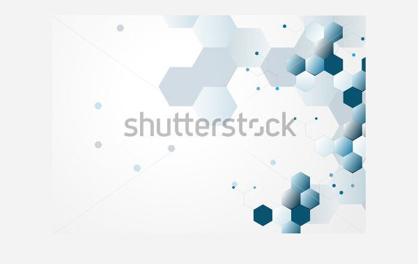 neurons and nervous system vector
