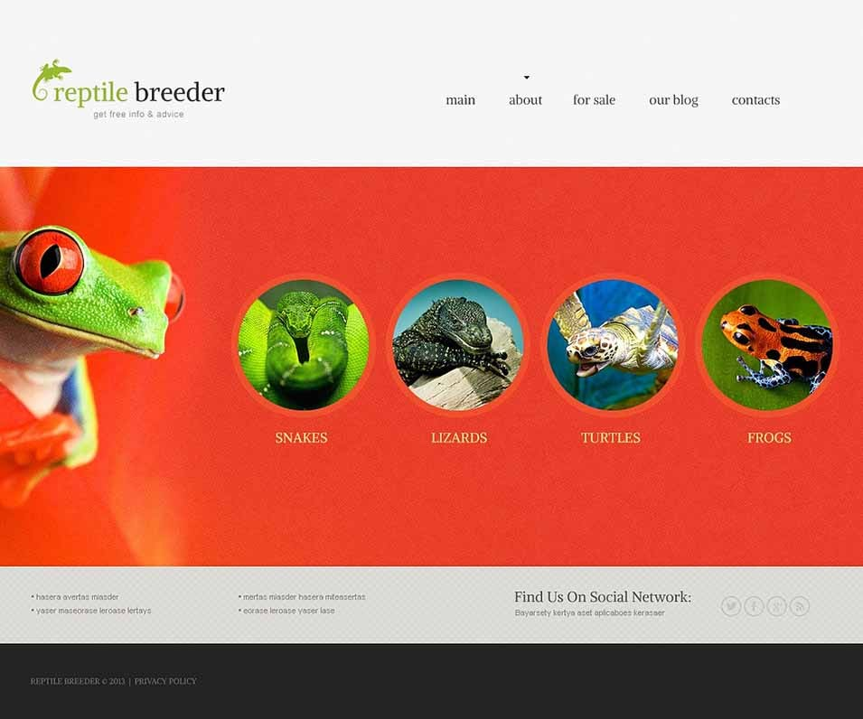 reptile pet joomla template43188