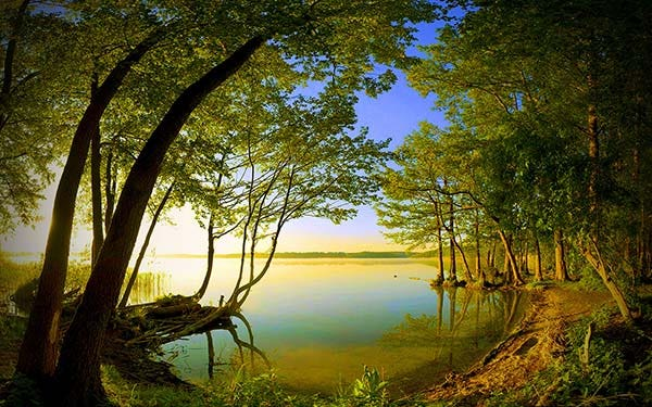 side lake view nature wallpaper copy