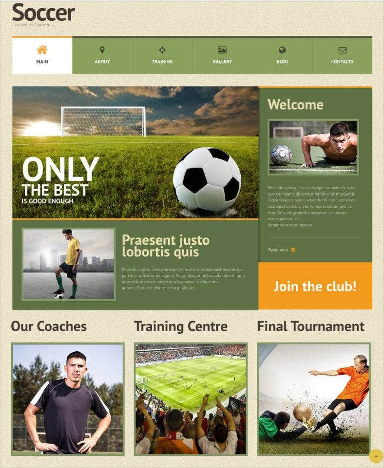 soccer wordpress website theme1 788x962