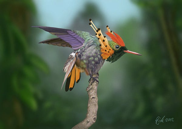 Tufted Coquette Hummingbird (Digital Painting)