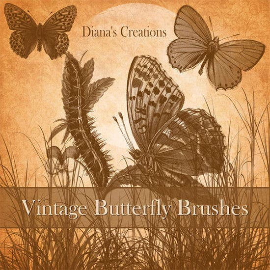 vintage butterfly brushes2