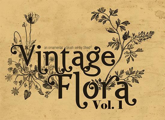 vintage flora brushes