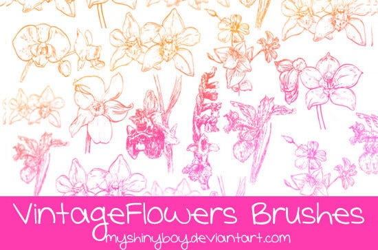 vintage flowers brushes1