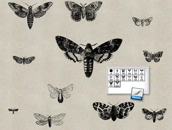 vintage moths ps brushes